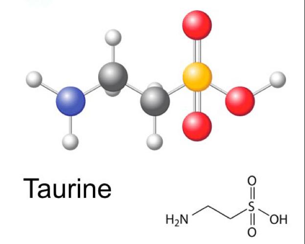 axit amin taurin
