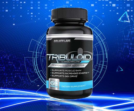 tribuloid tăng cơ